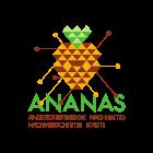 ananas_square_140